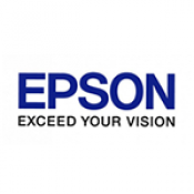 EPSON INK CARTRIDGES (41)